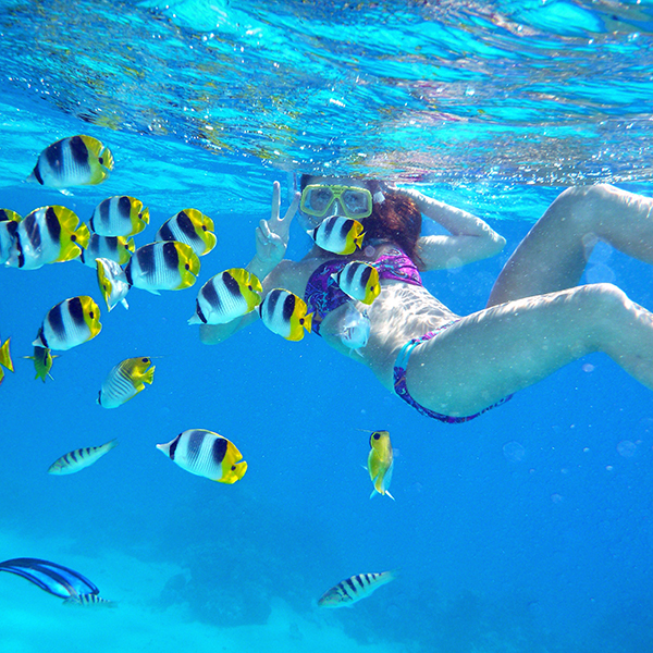 Top 7 Accessories For Your Next Underwater Adventure   Bikinis ... 6e6a9ced6b