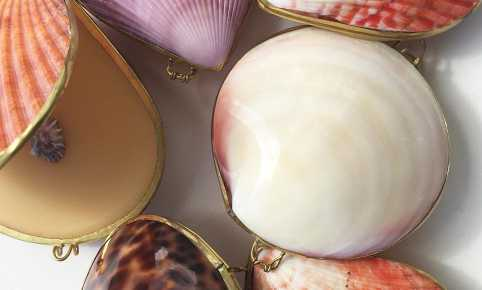 SOLID PERFUME IN SHELL
